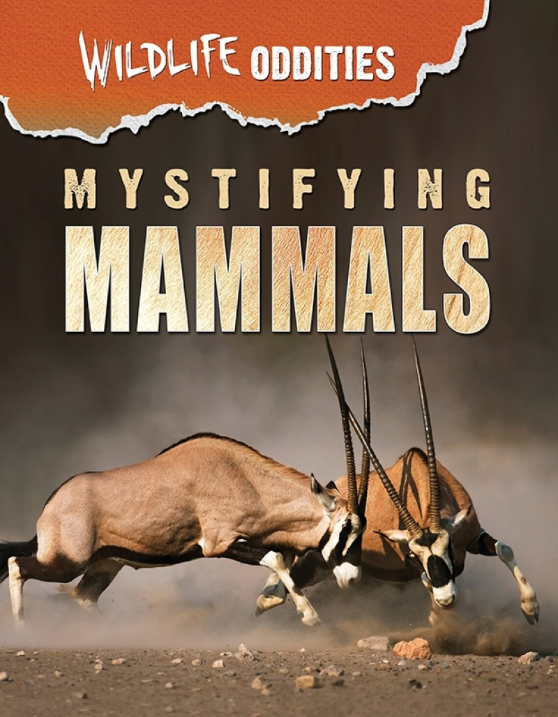 Mystifying Mammals
