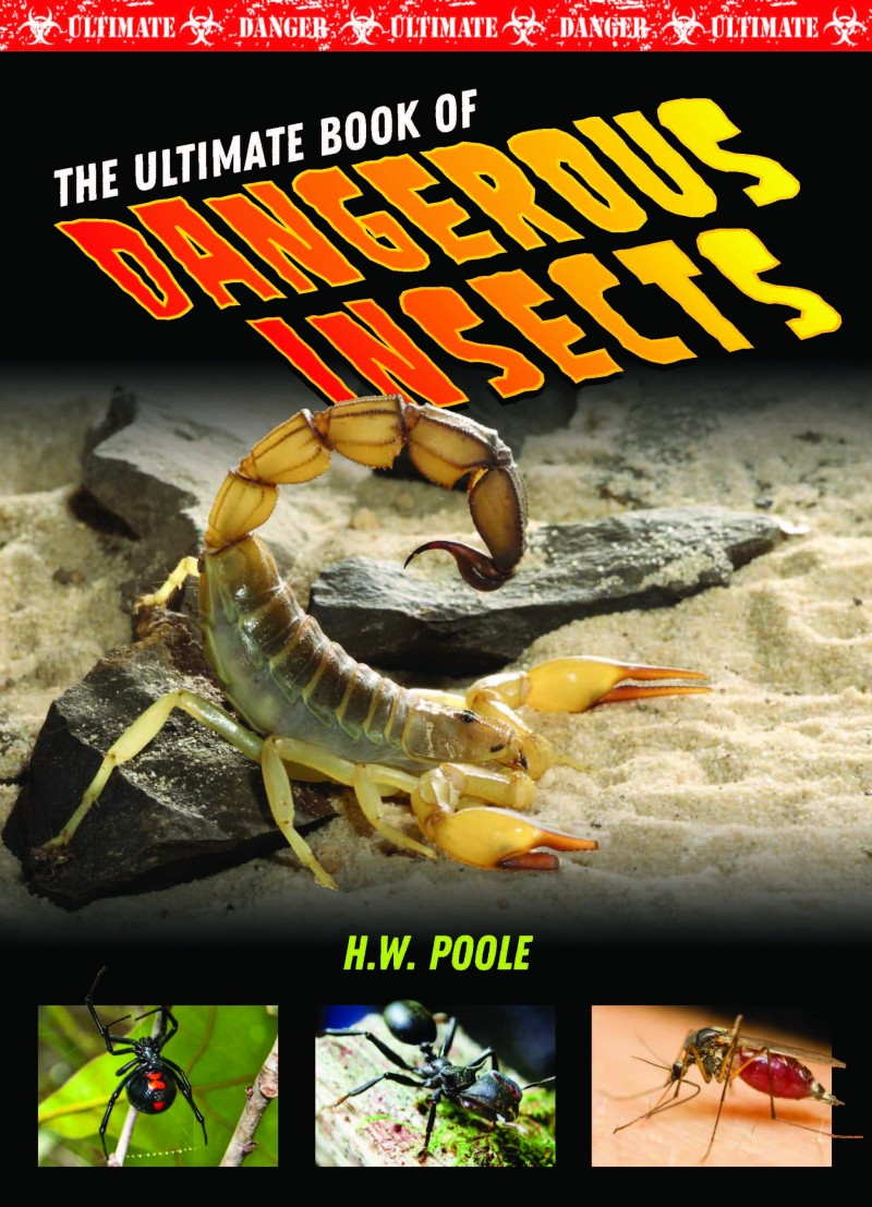 The Ultimate Book of Dangerous Insects